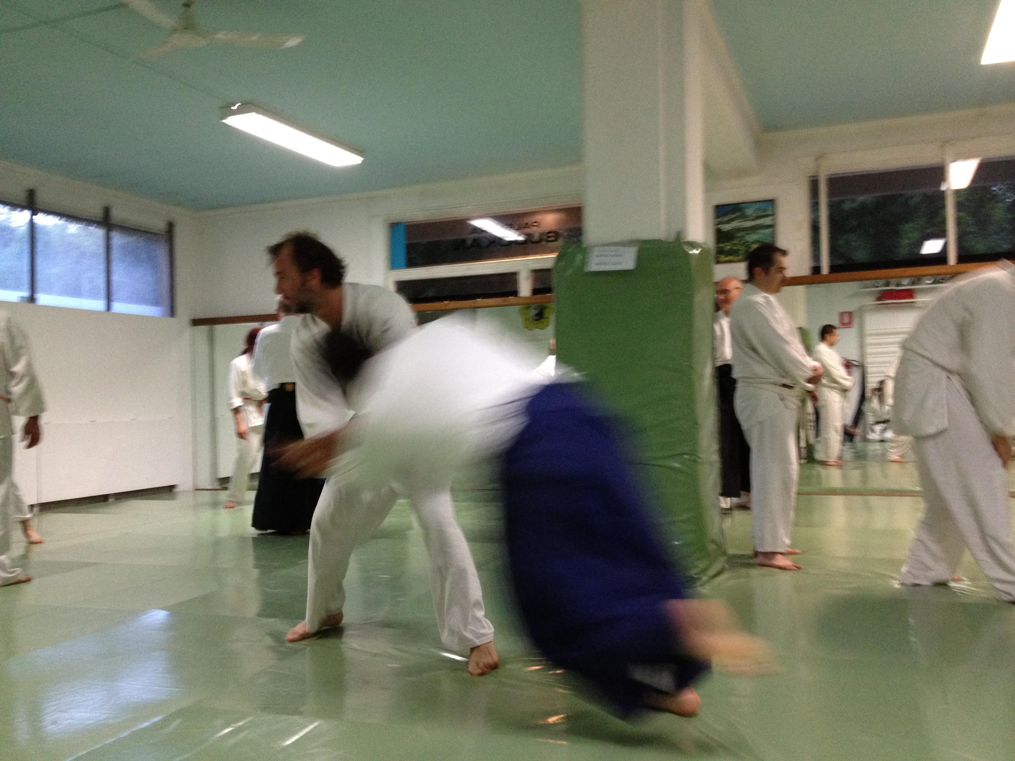 Stage di Aikido al Budokan